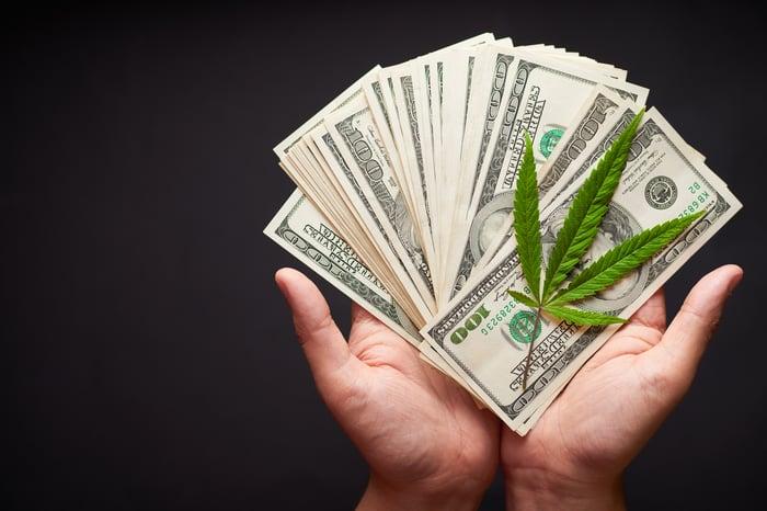 Hands holding $100 bills and a marijuana leaf