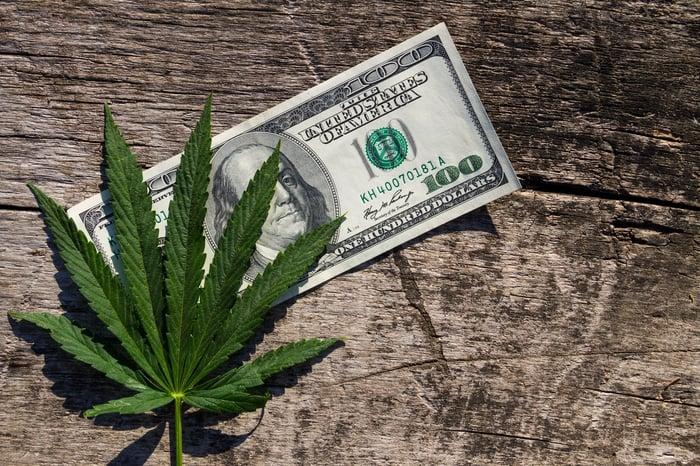 Marijuana leaf on top of a hundred dollar bill.