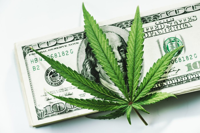 A cannabis leaf on top of a pile of $100 bills.