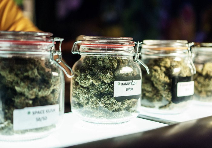 Clear jars on a dispensary counter that are packed and labeled with different strains of cannabis buds.