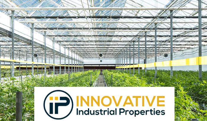 Interior of a large marijuana-growing greenhouse, with the company's name and logo at the bottom of the image.