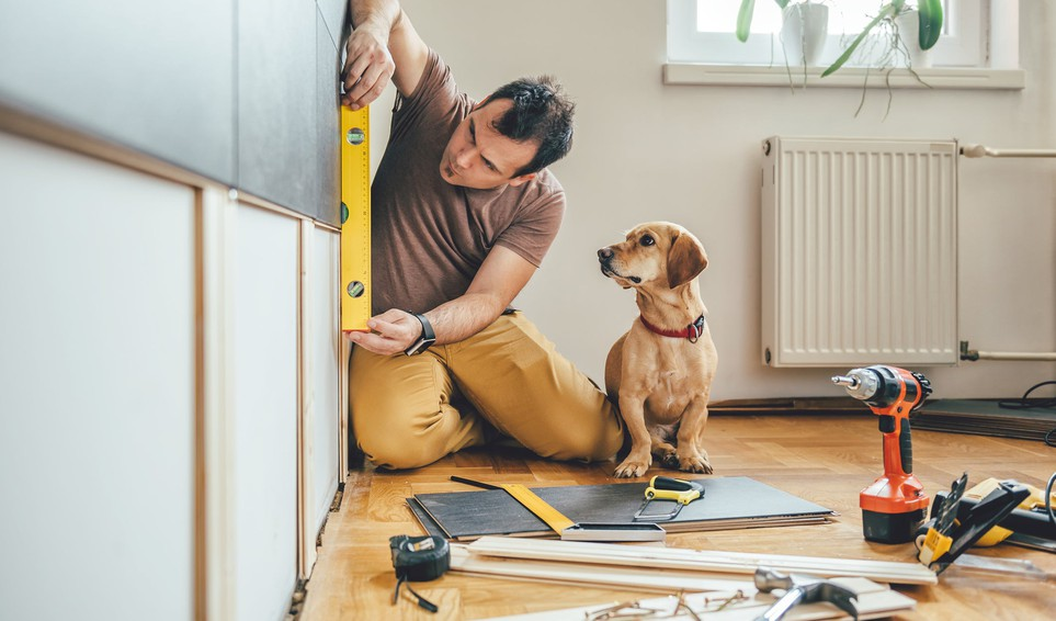 man sitting on the floor and holding a level against a wall with his dog and power tools sitting nearby home renovation DIY improvement house
