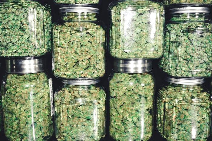 Marijuana in stacked mason jars.