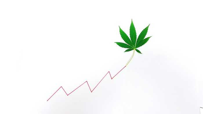 Marijuana leaf at the end of a line chart going up.