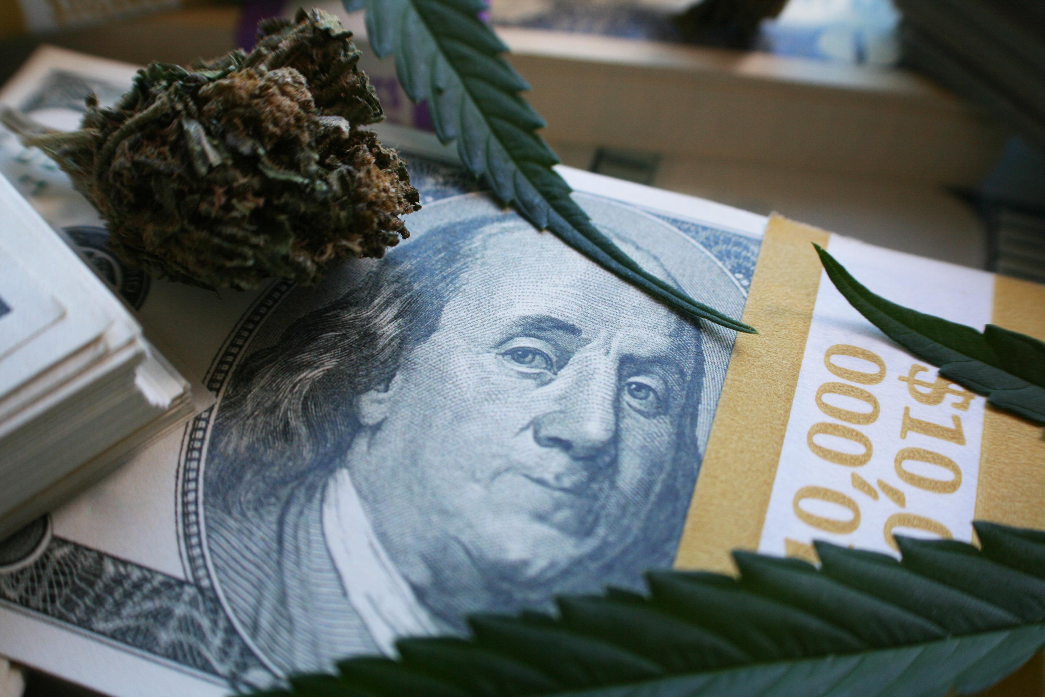 Stack of hundred dollar bills covered with marijuana.