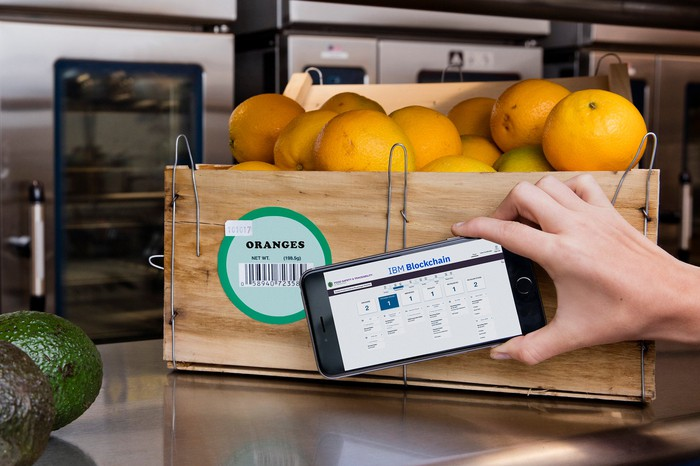 A hand holding a smartphone. The smartphone is being used to scan a bar code on a crate of oranges. The phone's display is running IBM blockchain software.