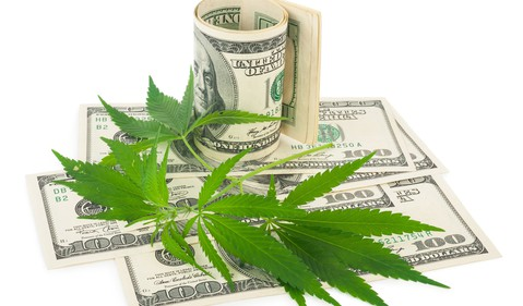 Marijuana leaves and money