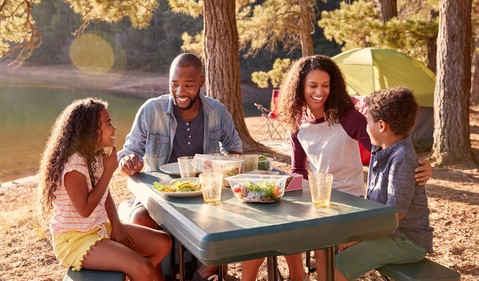 family picnic_GettyImages-966221022