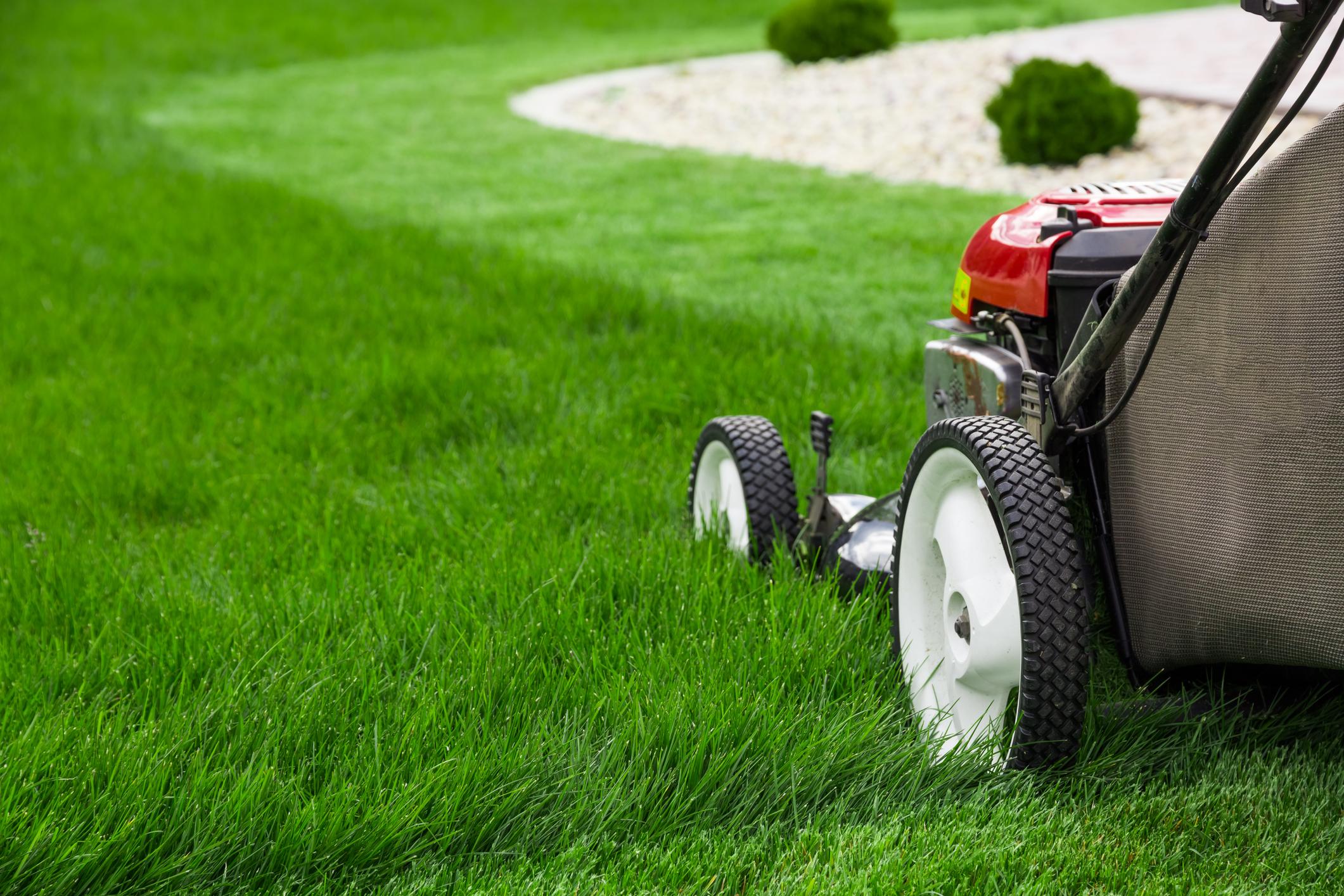 A lawnmower cuts a line through the grass