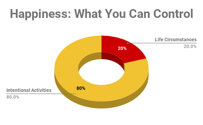 Chart showing factors you can control that affect happiness