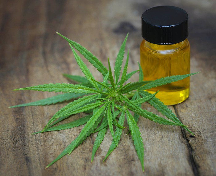 A vial of cannabidiol oil next to a cannabis leaf on top of a wooden surface.