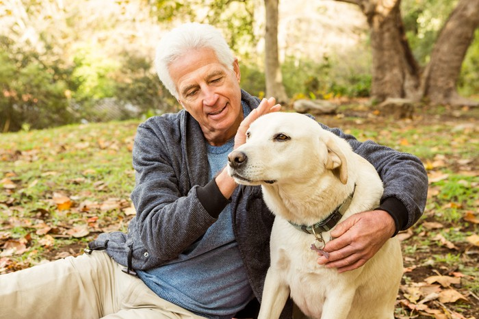 Gray-haired man petting dog outdoors