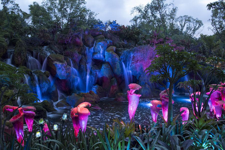 Pandora: the World of Avatar attraction at Walt Disney World