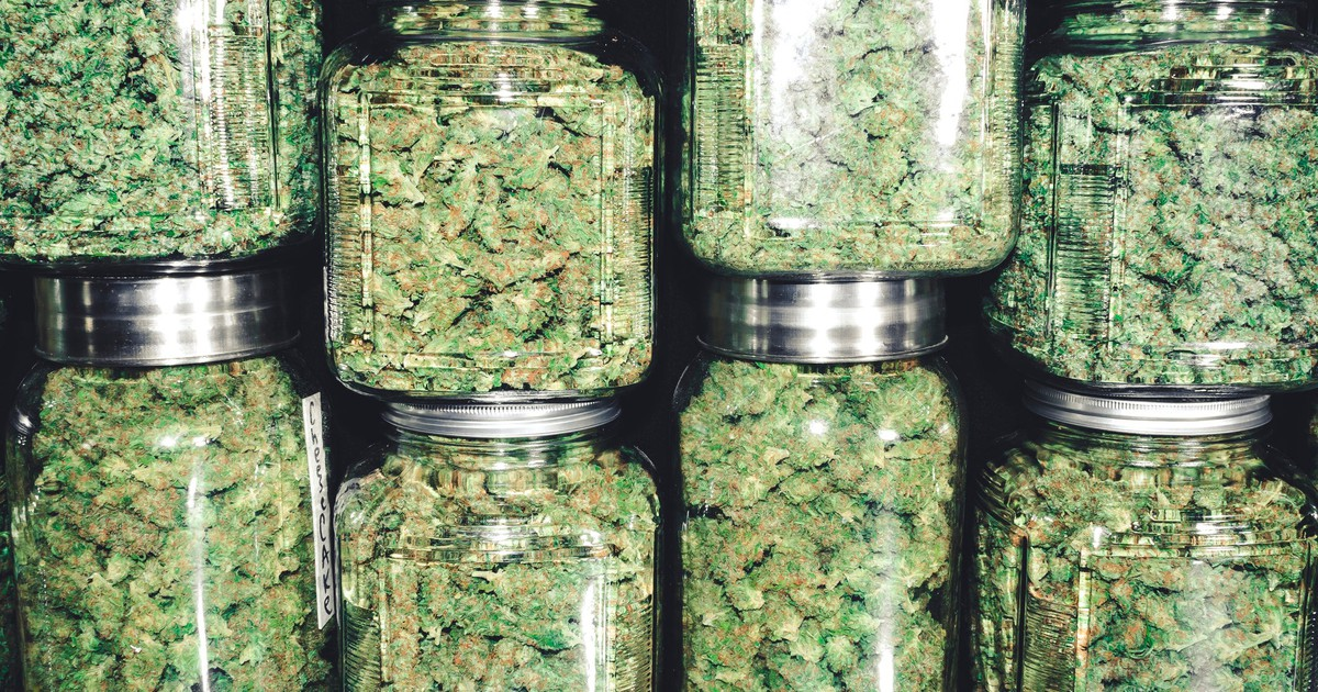 3 Cannabis Stocks That Doubled Investors' Money This Year
