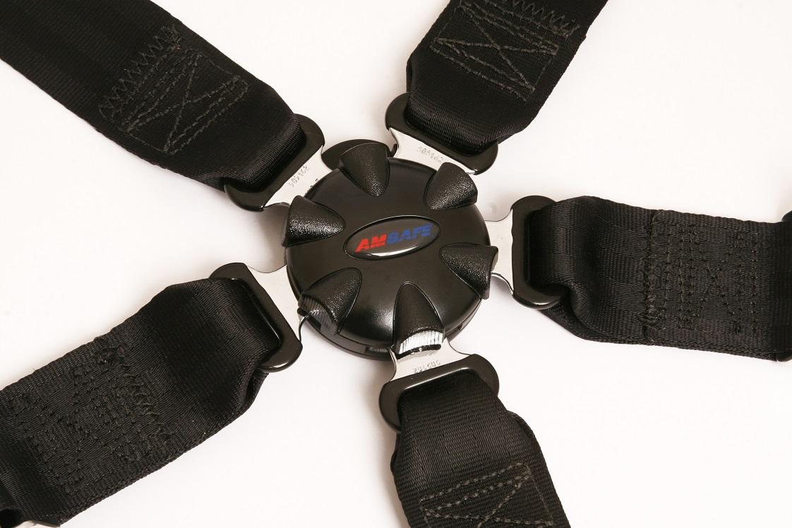 Aviation seat belt with five restraints.