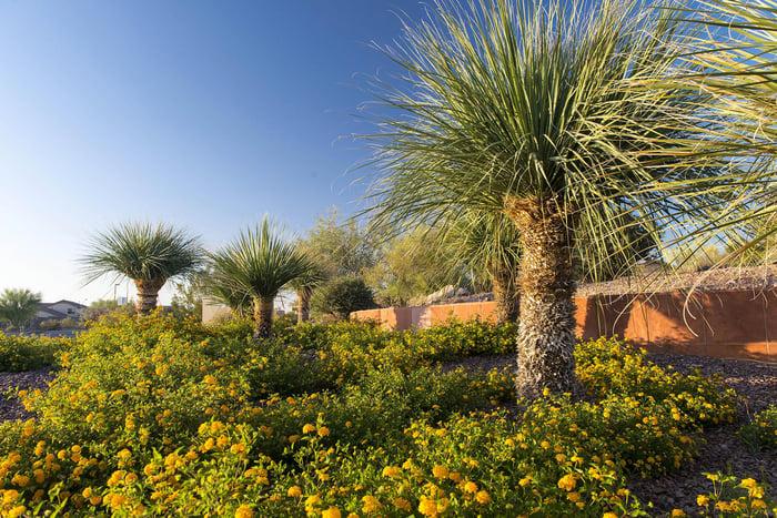 A landscaped yard in BrightView's portfolio