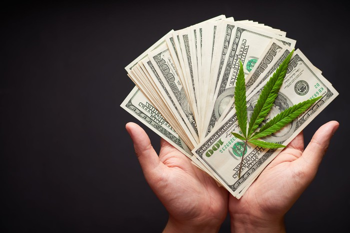 Hands holding $100 bills fanned out with a marijuana leaf on top.