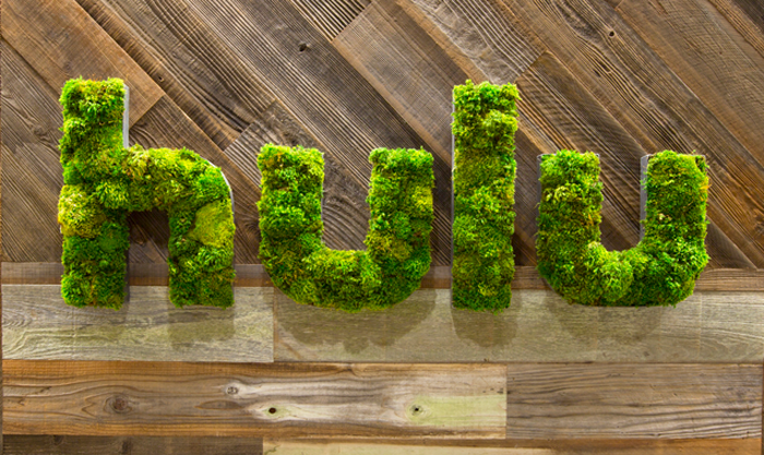 Hulu's logo sculpted out of plants on a wooden background