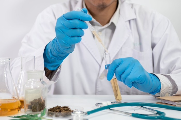 A lab researcher wearing gloves and holding a pipette and a test tube with amber-colored solution. There are cannabis buds and other lab equipment on the table in front.