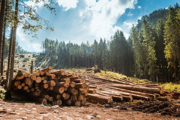 Timber piled up in a field.