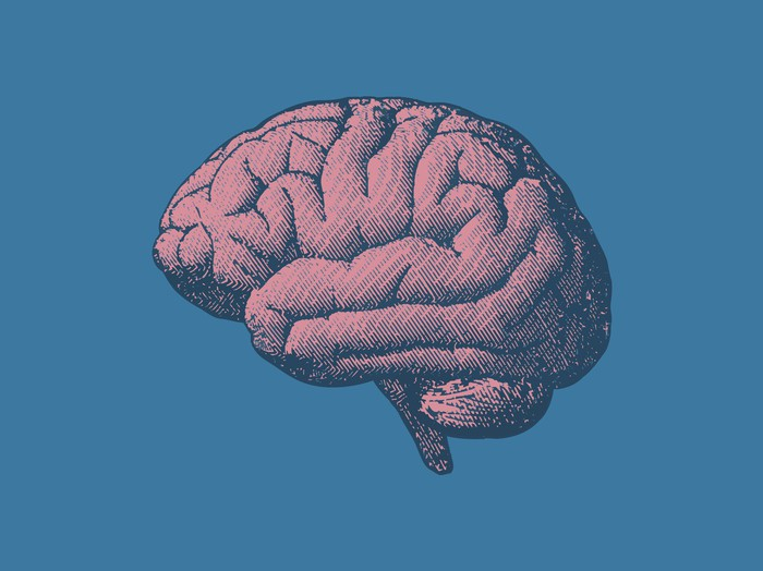Vintage illustration of a brain on a blue background