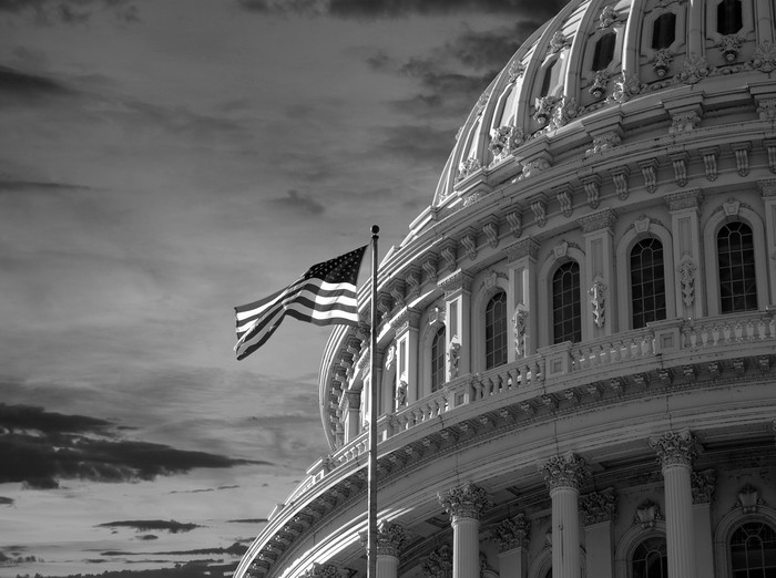 A black and white photo of the U.S. Capitol building with an American flag flying in the foreground.