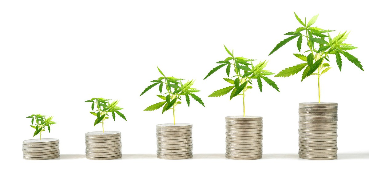 The 5 Most Profitable Pot Stocks on the Planet