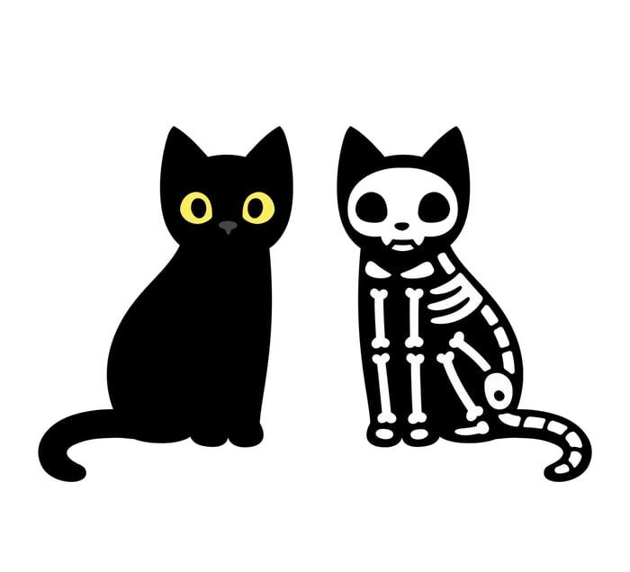 Black cartoon cat next to cartoon cat skeleton