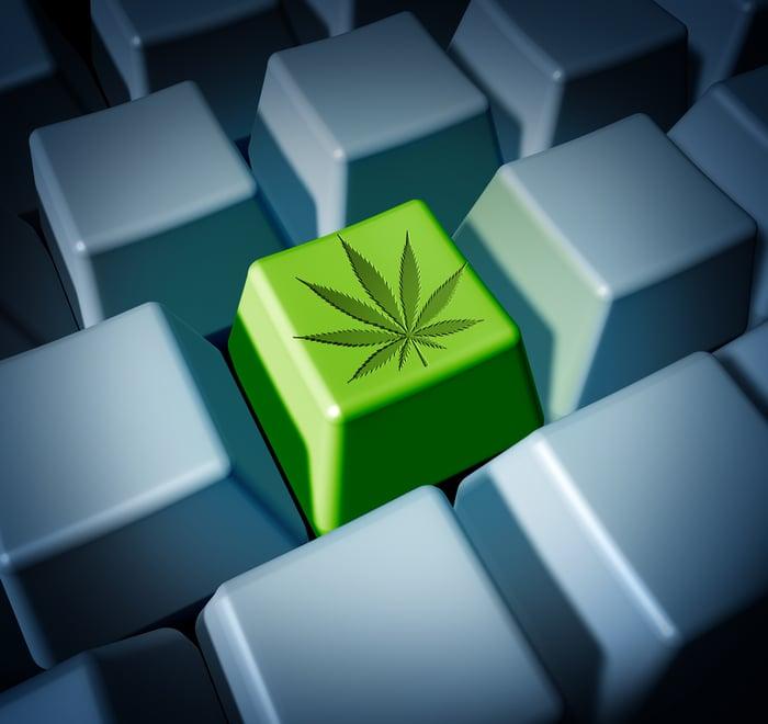 A cannabis leaf on a keyboard.
