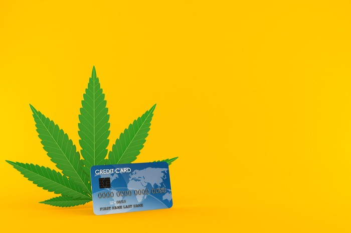 A credit card perched against a cannabis leaf.