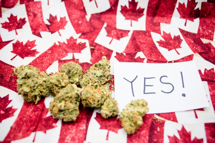 """Dried cannabis buds next to an index card with the word """"ye""""s written on it, all lying atop dozens of miniature Canadian flags."""