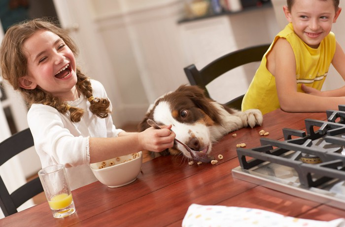 Two kids and a dog enjoy cereal at the breakfast table.