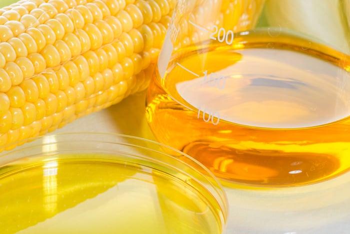 An ear of corn beside a flask of golden liquid.