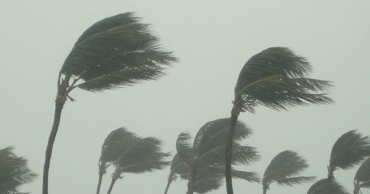 What Every Homeowner Should Do When Hurricanes Threaten