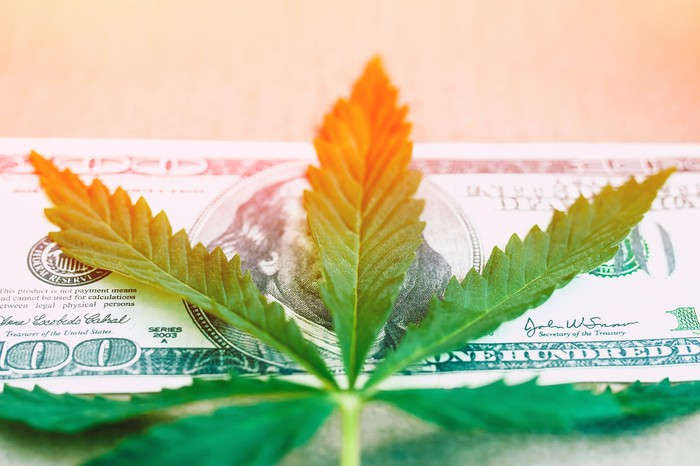 A cannabis leaf on top of a U.S. hundred dollar bill