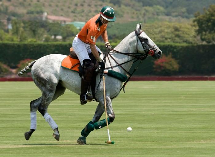 Rider on a polo pony hitting a polo ball