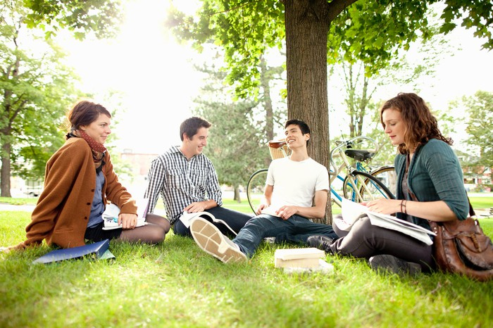 College students study together underneath a tree on campus.