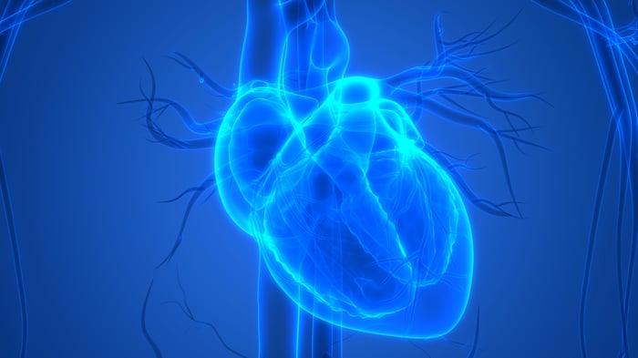 Blue illuminated heart