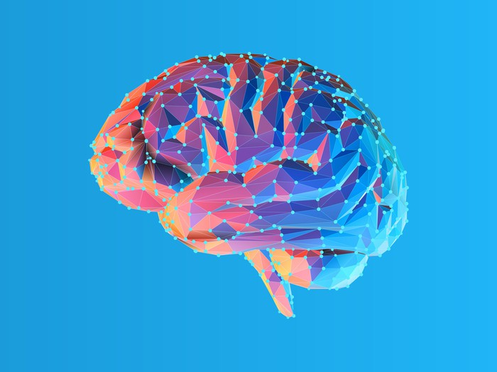 Image of brain on blue background.