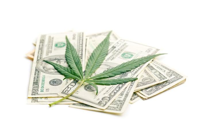 A cannabis leaf on top of U.S. cash.