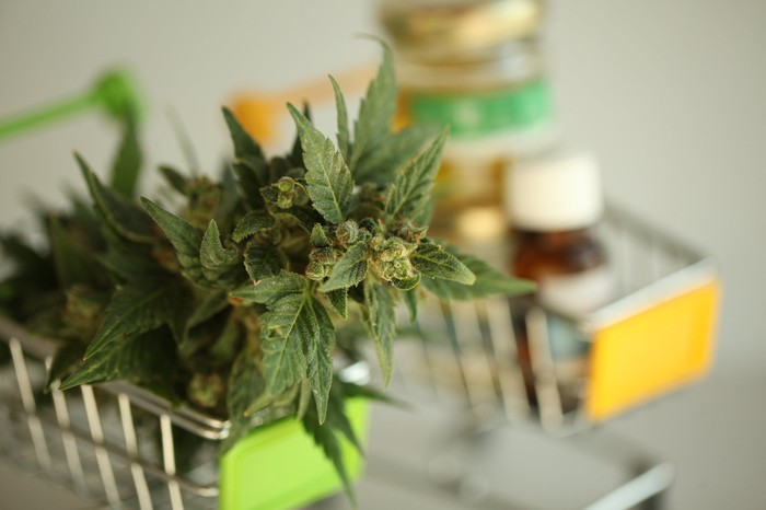 Two miniature shopping baskets, with one holding a cannabis flower, and the other vials of cannabis oil.