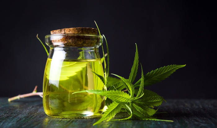 A glass jar containing a greenish oil, with a cutting from a cannabis plant laid next to it