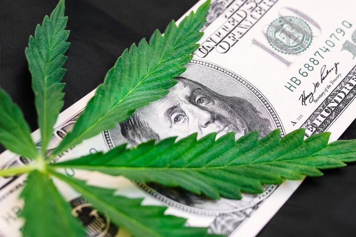 A cannabis leaf on top of a one hundred dollar bill.