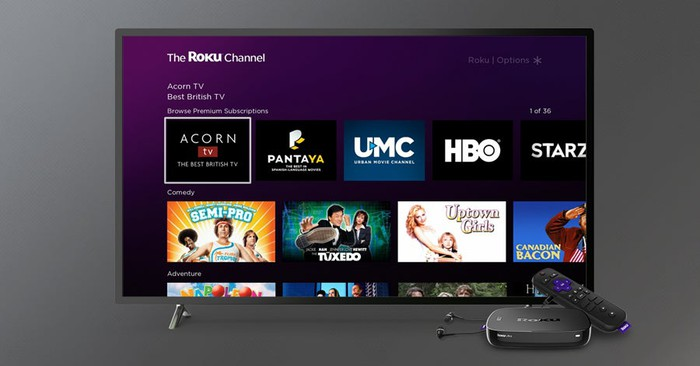 A TV showing The Roku Channel, as well as premium streaming subscriptions available including HBO and Starz.