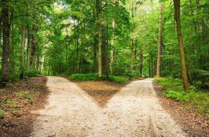 A road diverges in a forest.
