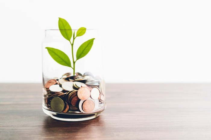 A small plant growing out of a jar of coins.