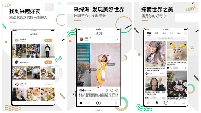 Weibo's Oasis