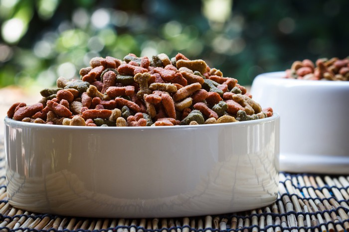 Close-up of colorful dry dog food in a porcelain bowl.