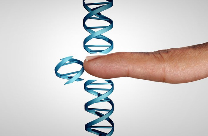 A finger pushing a chunk of DNA out of a longer strand of DNA.