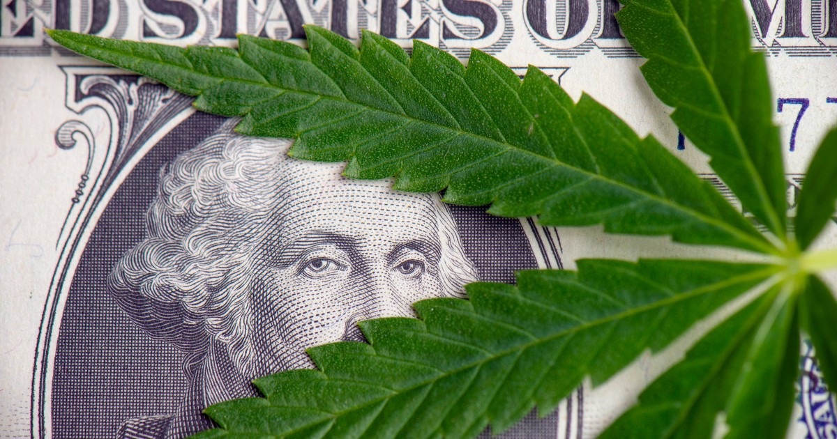3 Top Cannabis Stocks to Buy Now